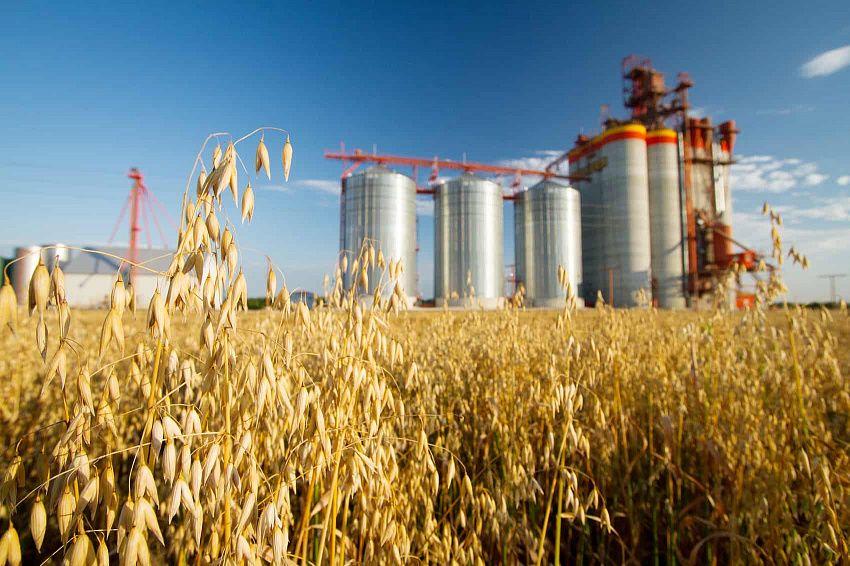 В ЕАЭС запустят новый проект по развитию агропромышленного комплекса